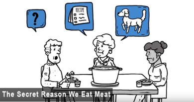 You-Will-Stop-Eating-Animals-After-Watching-This-Video-Thumbnail