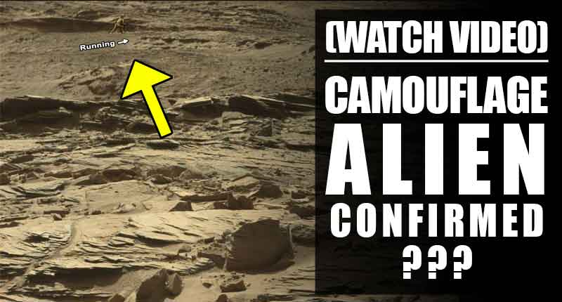 did-nasas-rover-captured-camouflage-alien-on-mars-thumbnail